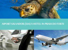 Northeast Brazil - Praia do forte - Transfer Salvador airport to hotel in Praia do forte - Salvador para Praia do forte
