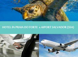 Northeast Brazil - Praia do forte - Transfer hotel in Praia do forte to Salvador airport - Traslado Praia do forte