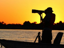 North Pantanal - Birdwatching