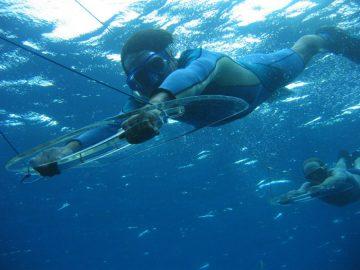 Prancha Submarina em Fernando de Noronha - Planche sous-marine