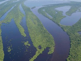 Amazon river negro - Viagem na Amazônia