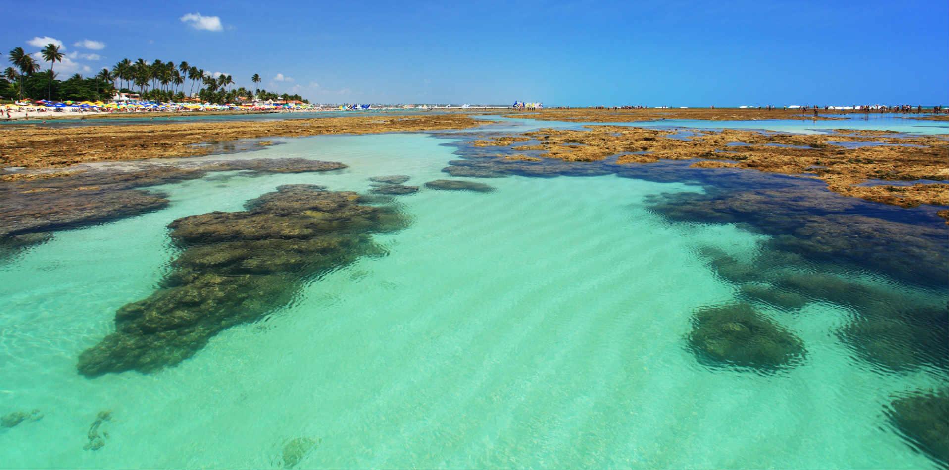 Porto de galinhas - Reef